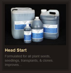 Head Start rev2