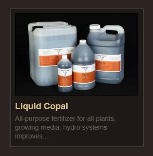 Liquid Copal rev3